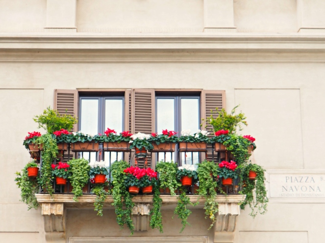 Pretty Flowers in Rome Italy, Travel Blogger