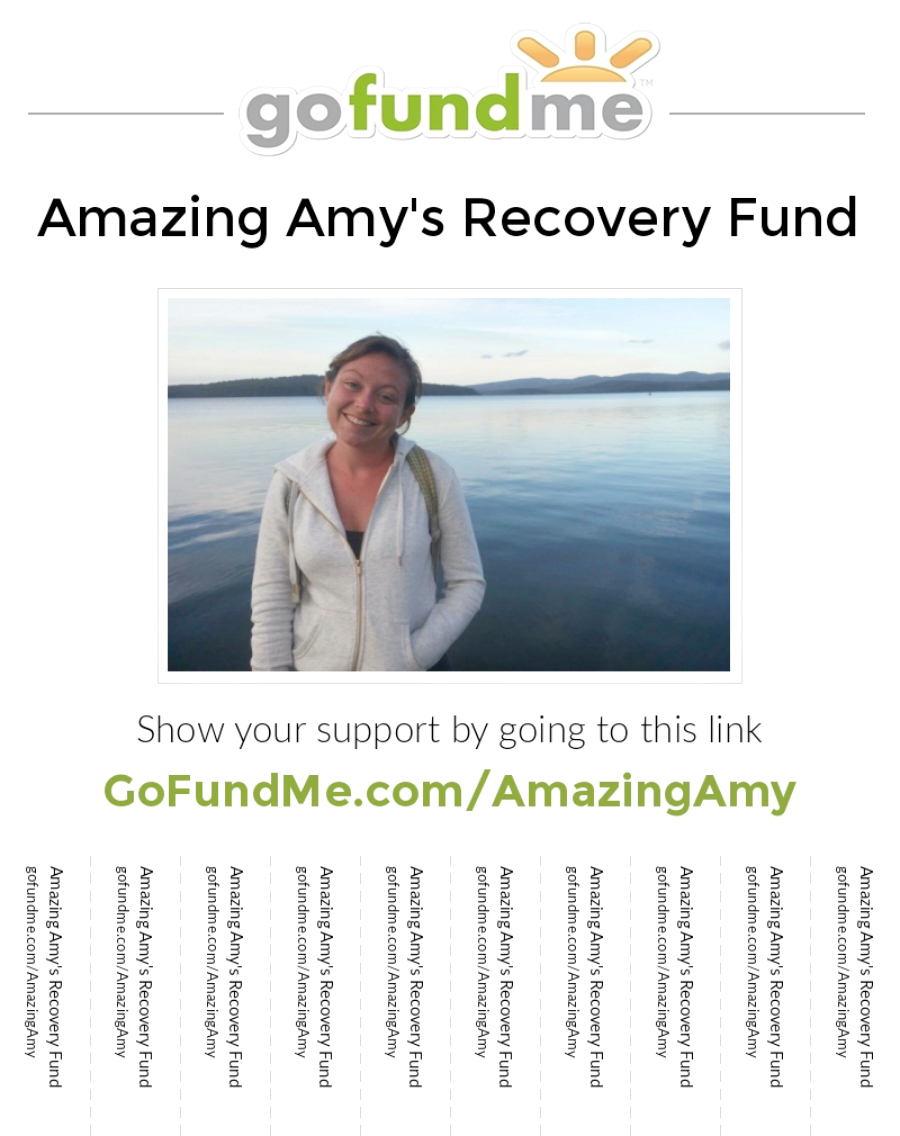 Amazing Amy's Recovery Fund Go Fund Me Donation Page