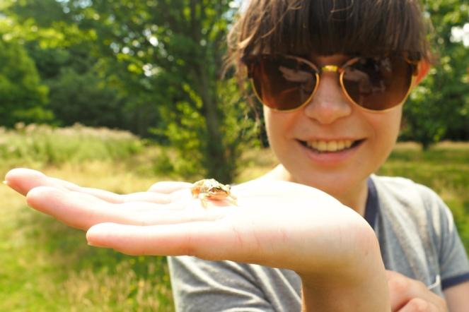 Little Frog at Danson Park Welling Wildlife Nature Blog Blogger